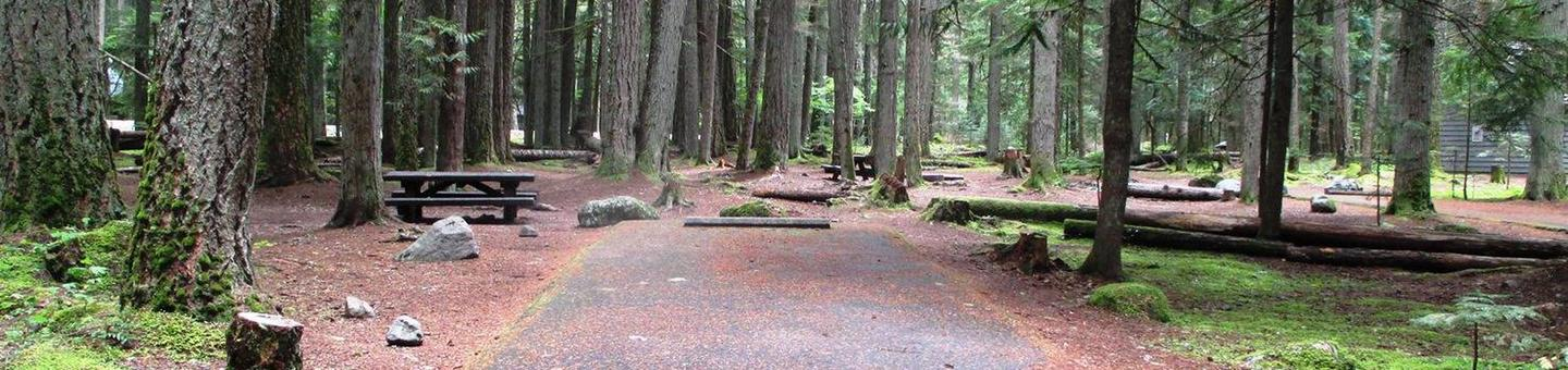 Silver Springs CampgroundSite 51