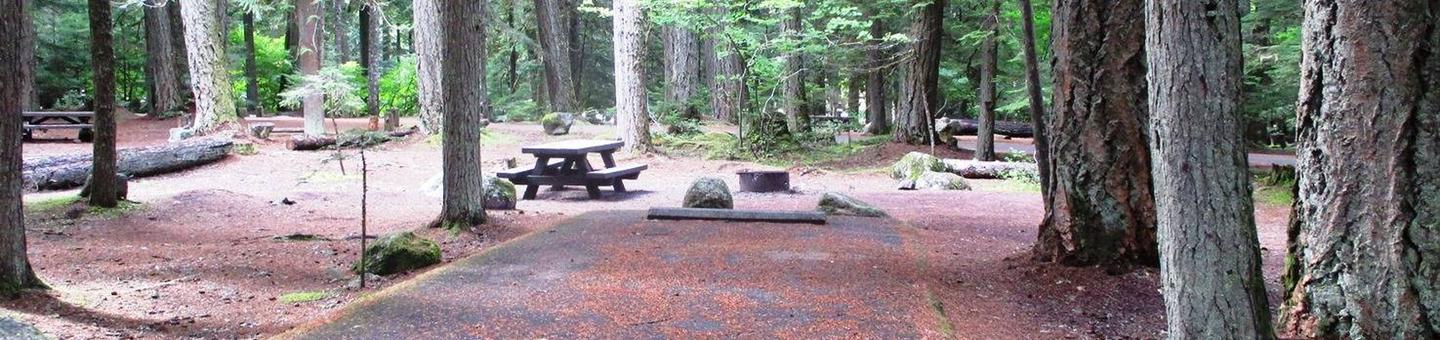 Silver Springs CampgroundSite 56