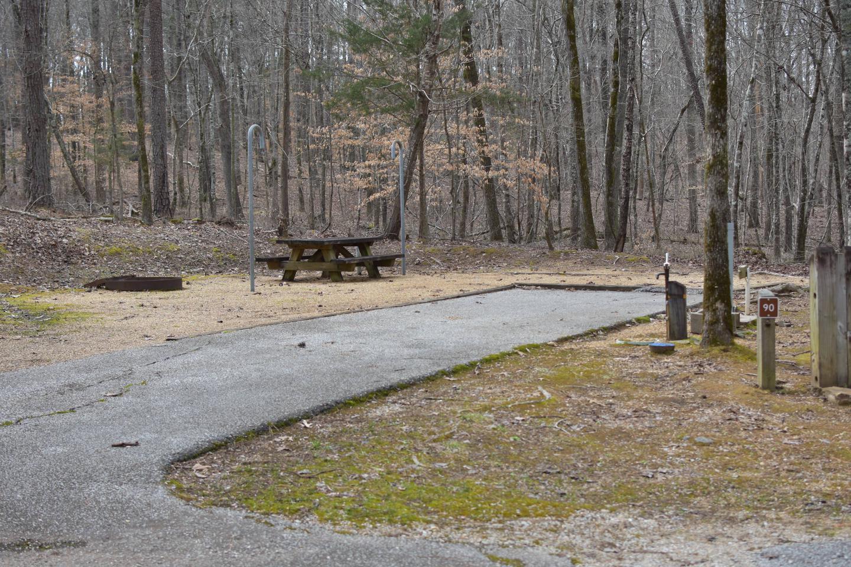 Bear Site 90Bear Site 90, March 1, 2020