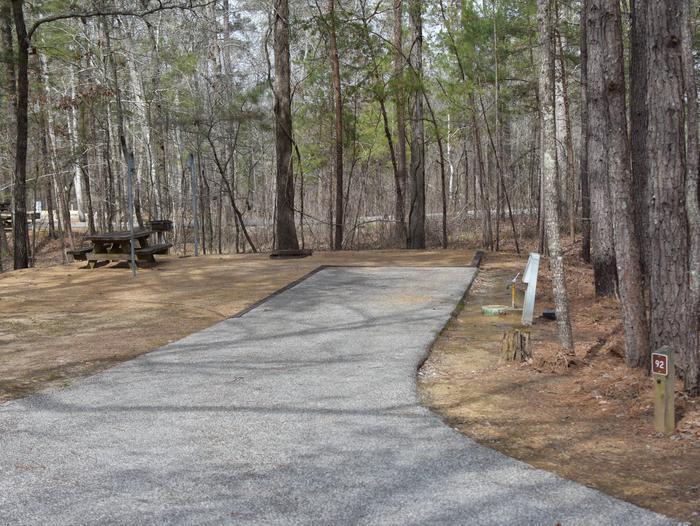 Bear Site 92Bear Site 92, March 1, 2020