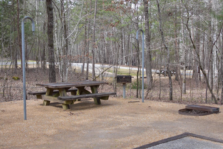 Bear Site 92-2Bear Site 92, March 1, 2020