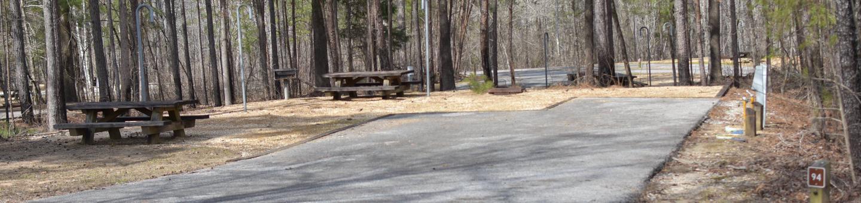 Bear Site 94Bear Site 94, March 1, 2020