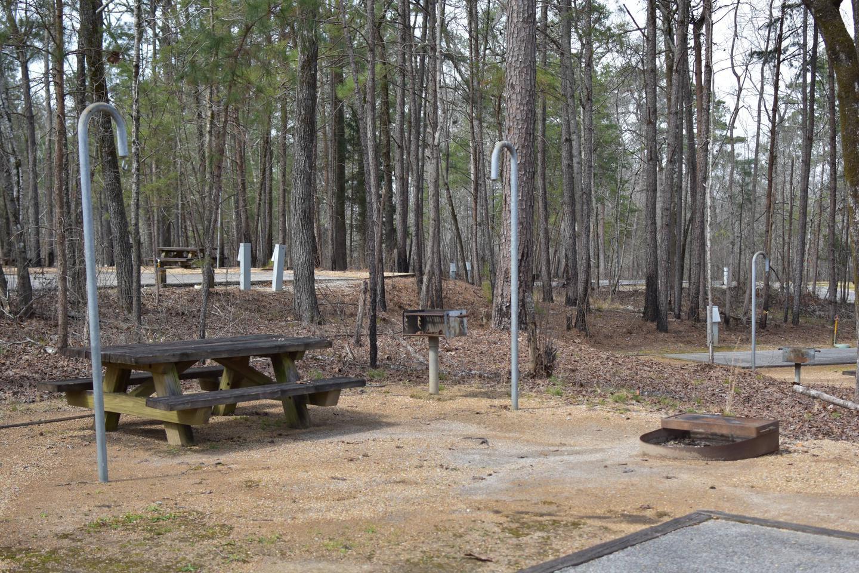 Bear Site 96-2Bear Site 96, March 1, 2020