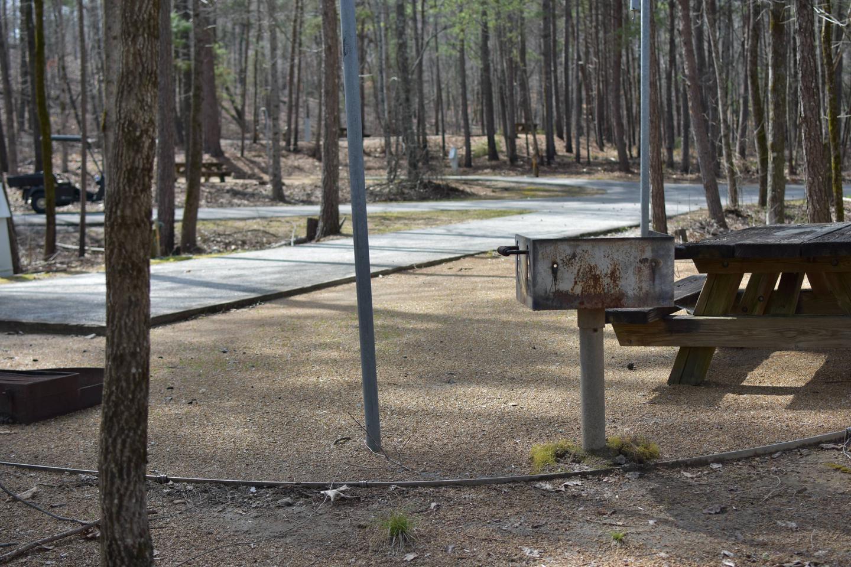 Bear Site 99-3Bear Site 99, March 1, 2020
