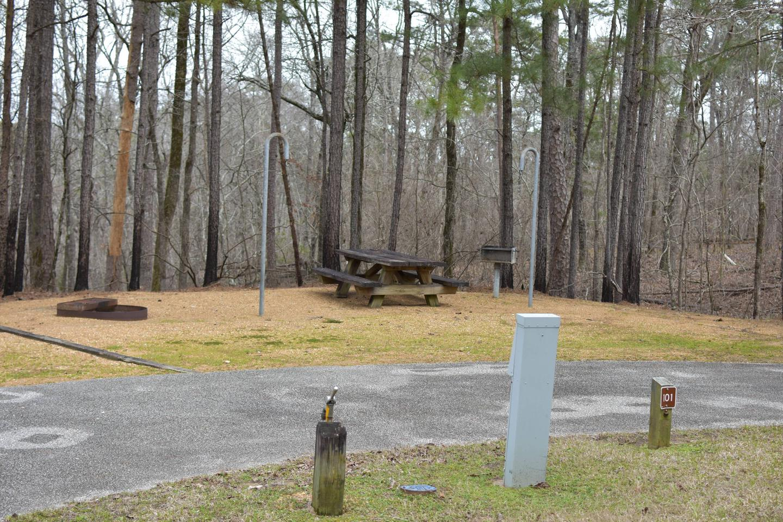 Bear Site 101Bear Site 101, March 1, 2020