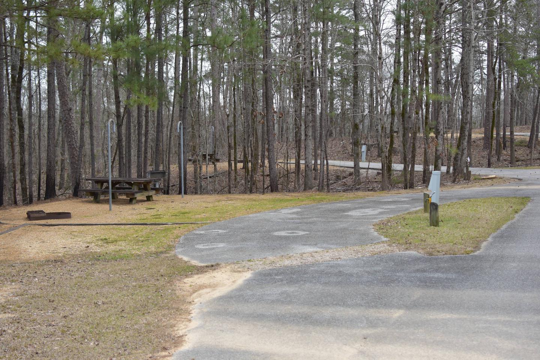 Bear Site 101-3Bear Site 101, March 1, 2020