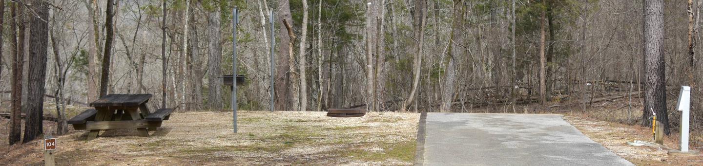 Bear Site 104Bear Site 104, March 1, 2020