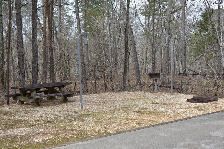 Bear Site 104-2Bear Site 104, March 1, 2020