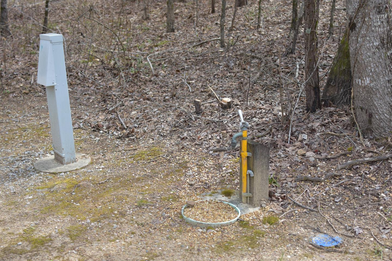 Bear Site 105-1Bear Site 105, March 1, 2020