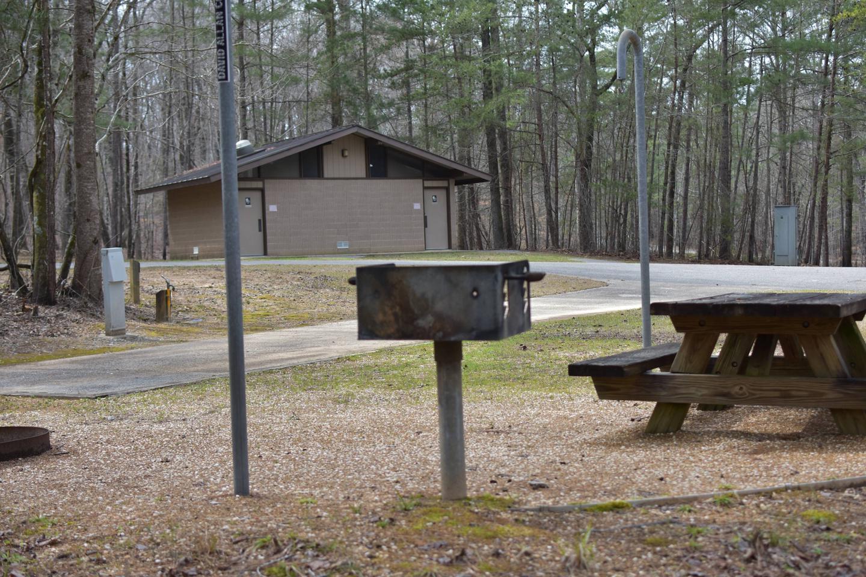 Bear Site 105-3Bear Site 105, March 1, 2020