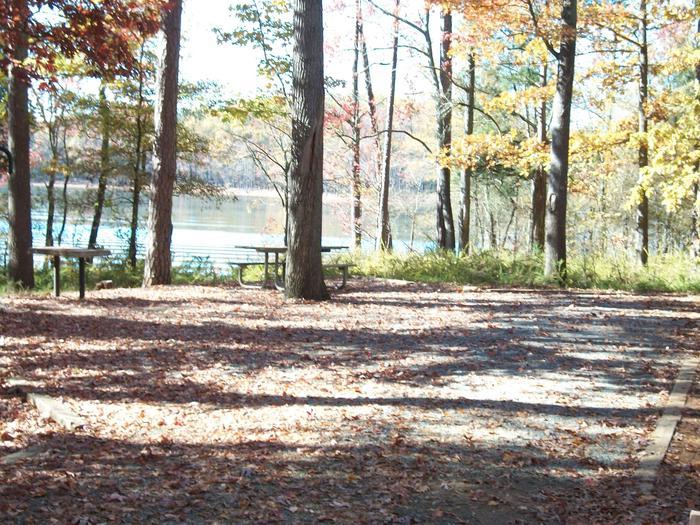 Rudds Creek CampgroundCampsite #80