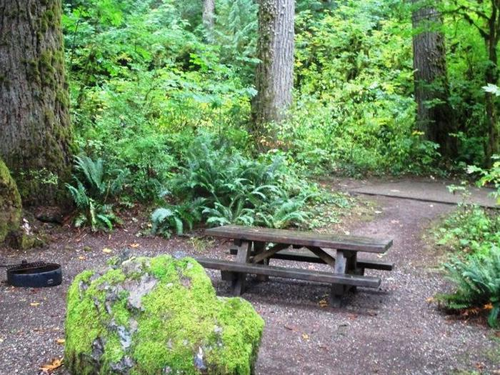 Clear Creek CampgroundSite 11