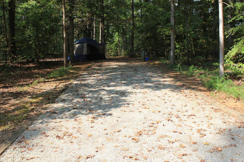 Rudds Creek CampgroundCampsite #92