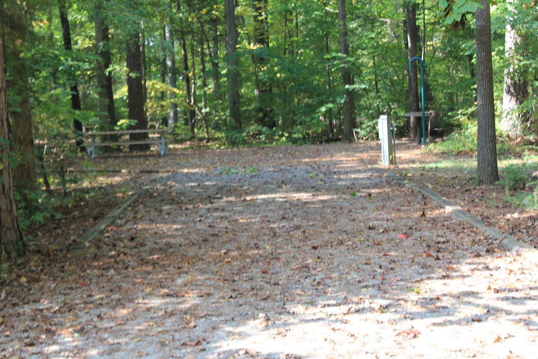Rudd's Creek CampgroundCampsite #96