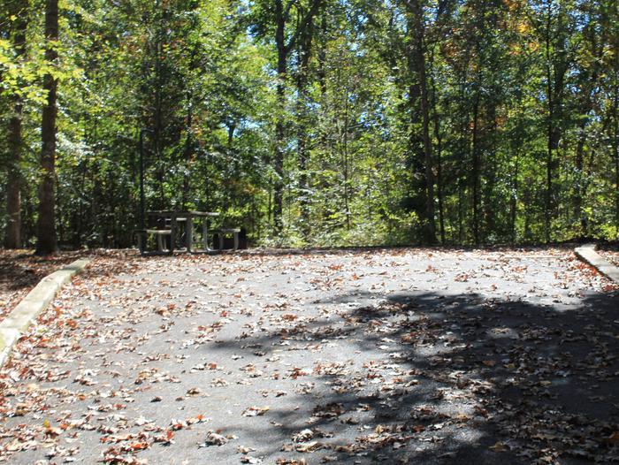 Longwood CampgroundCampsite #2