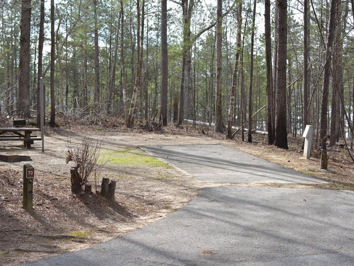 Fawn Site 70Fawn Site 70, March 1, 2020