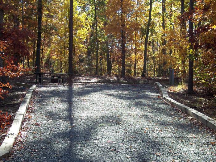 Longwood CampgroundCampsite #3