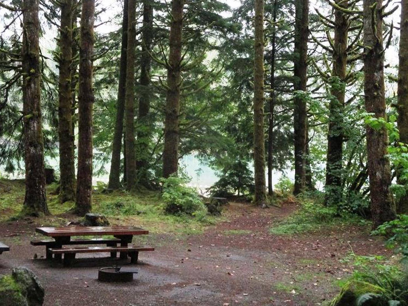 Horseshoe Cove CampgroundSite 21