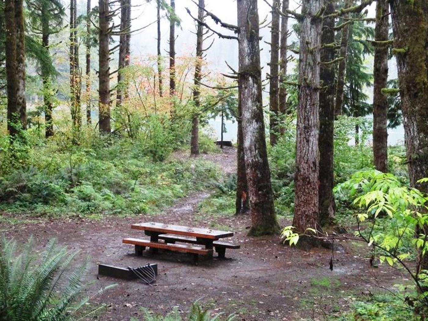 Horseshoe Cove CampgroundSite 24
