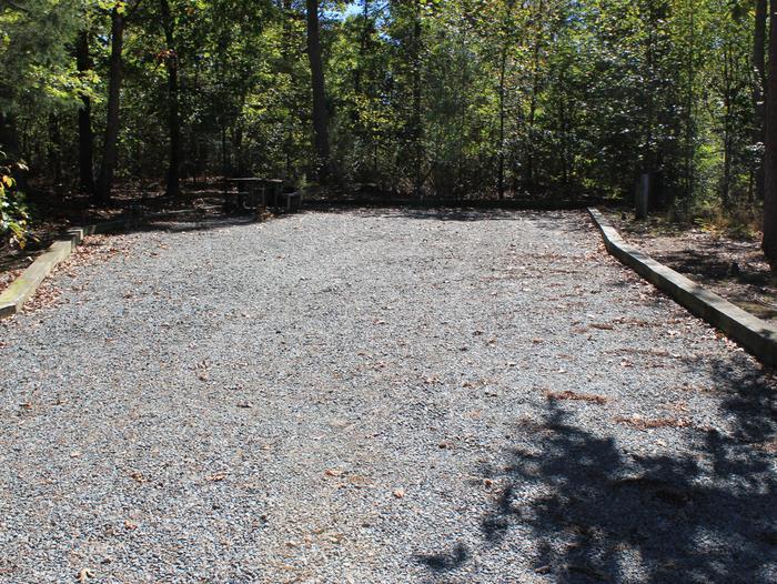 Longwood CampgroundCampsite #4
