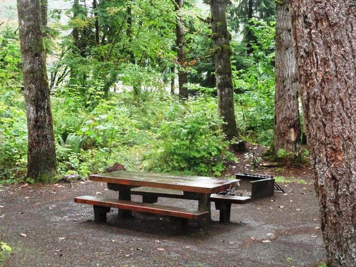 Horseshoe Cove CampgroundSite 26