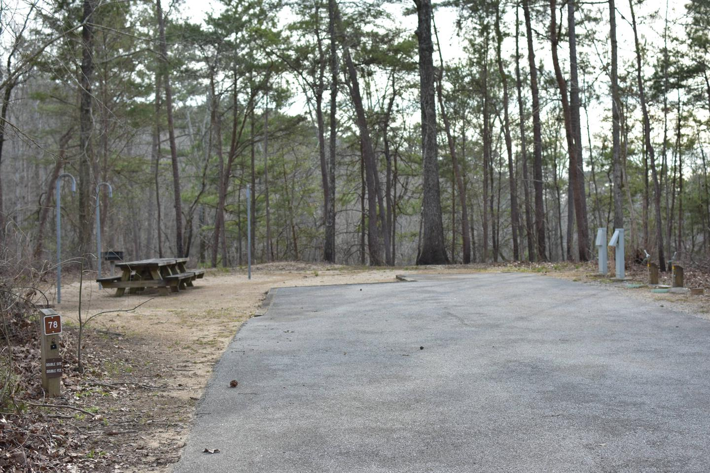 Fawn Site 78Fawn Site 78, March 1, 2020