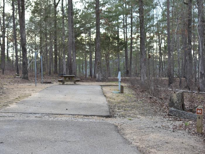 Fawn Site 80Fawn Site 80, March 1, 2020