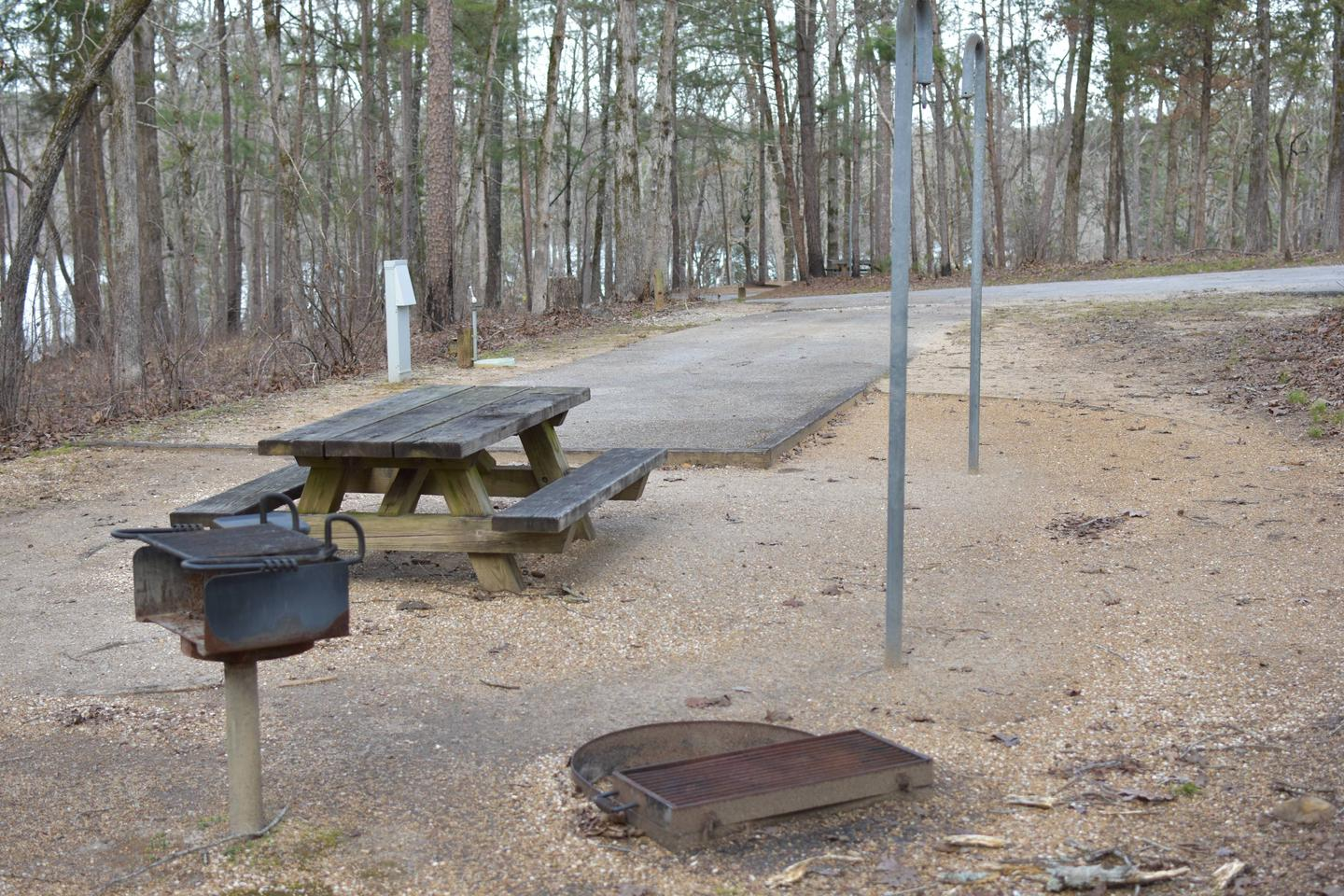 Fawn Site 80-3Fawn Site 80, March 1, 2020