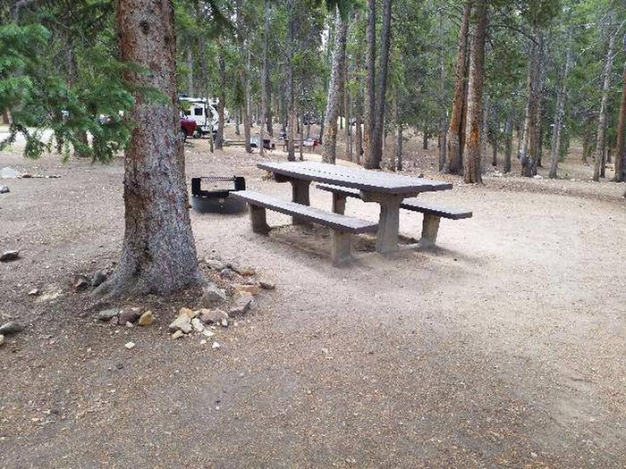 Baby Doe Campground, Site 16 table and fire ring