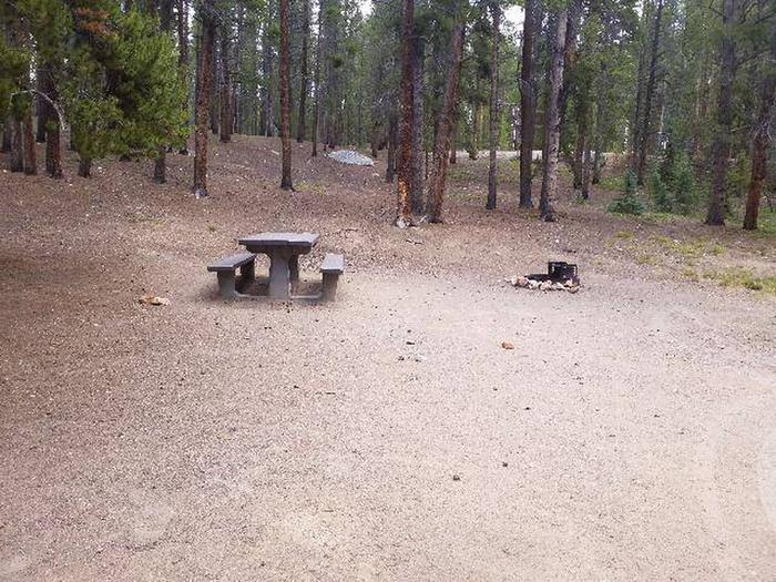Baby Doe Campground, Site 19 table and fire ring