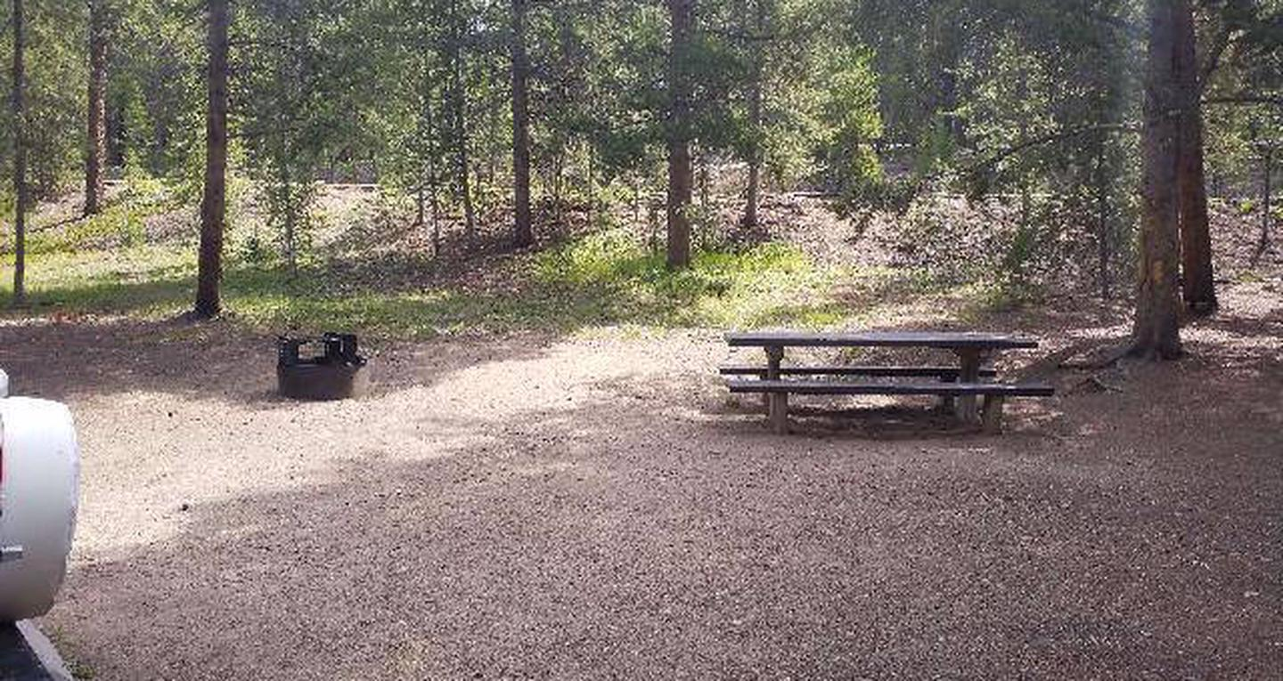Baby Doe Campground, Site 21
