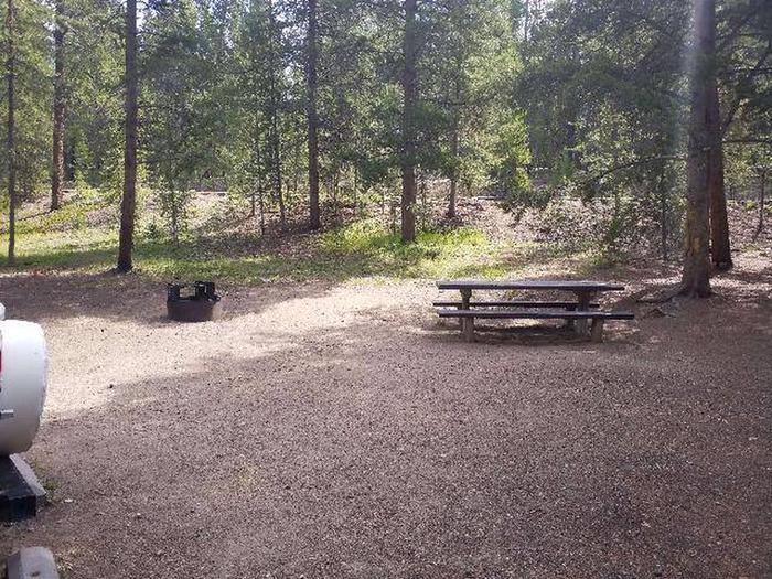 Baby Doe Campground, Site 21 table and fire ring