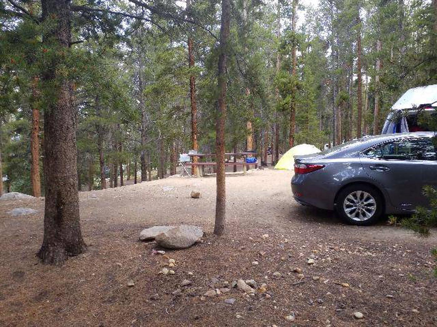 Baby Doe Campground, Site 22 table