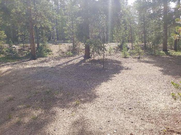 Baby Doe Campground, Site 24 clearing