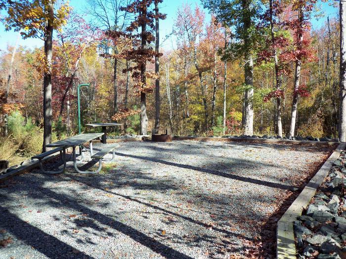 Longwood CampgroundCampsite #6