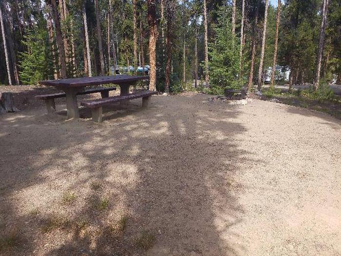 Baby Doe Campground, Site 28 picnic table and fire ring