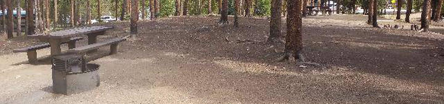 Baby Doe Campground, Site 29