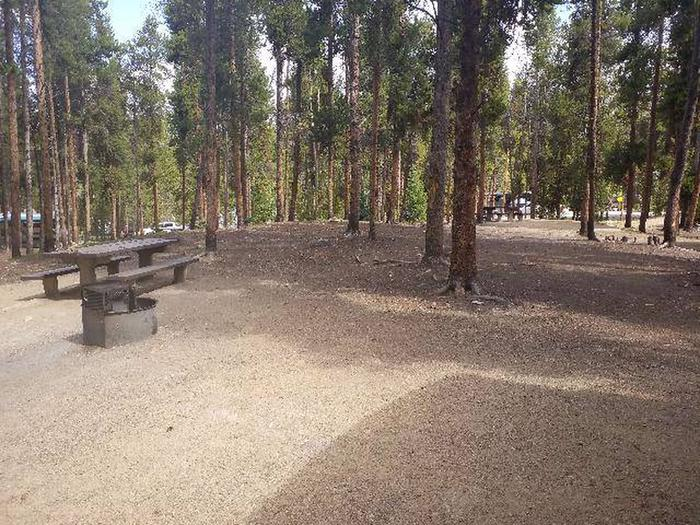 Baby Doe Campground, Site 29 table and fire ring