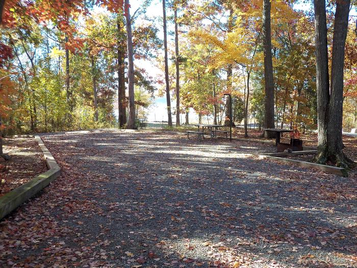 Longwood CampgroundCampsite #10