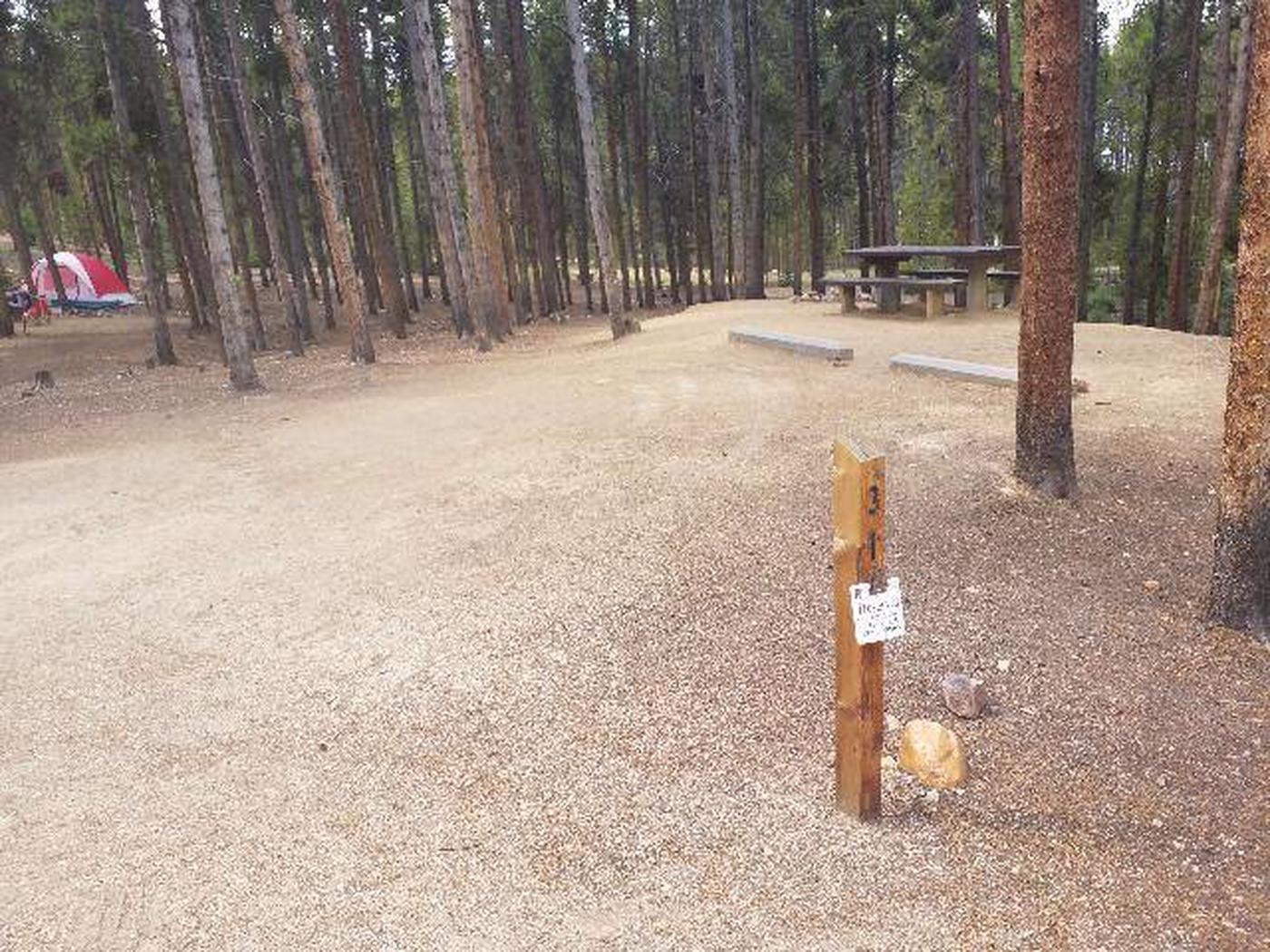 Baby Doe Campground, Site 31 marker