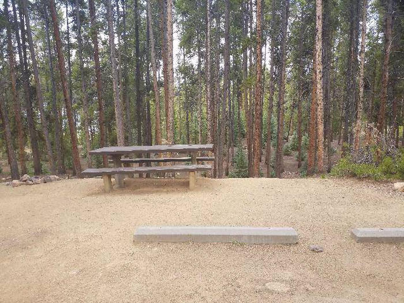 Baby Doe Campground, Site 31 table and parking stops
