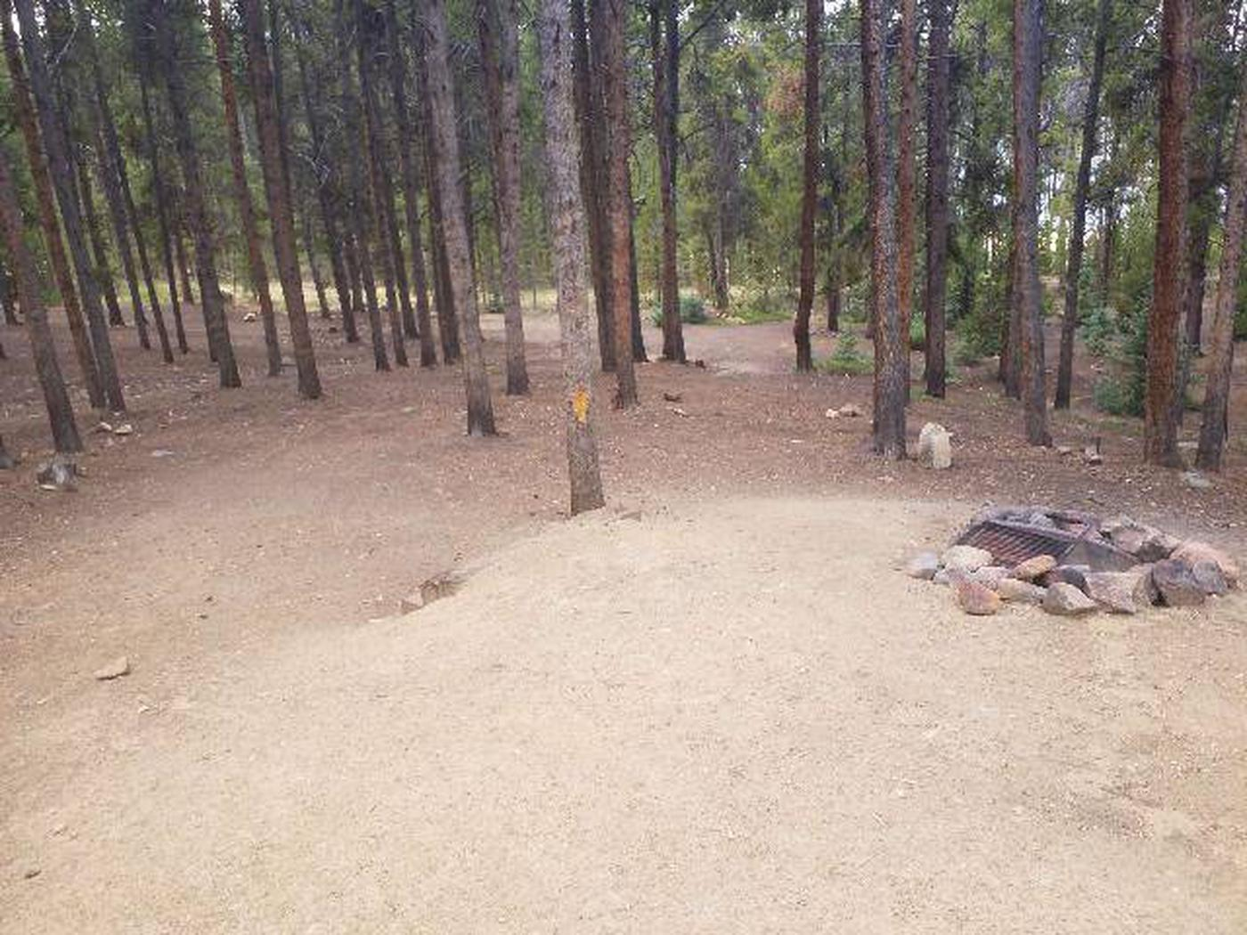 Baby Doe Campground, Site 31 fire ring