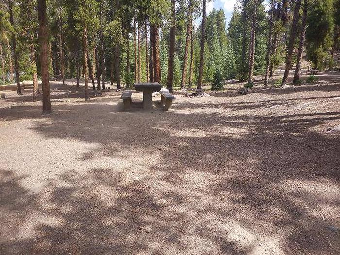 Baby Doe Campground, Site 36 picnic table and fire ring