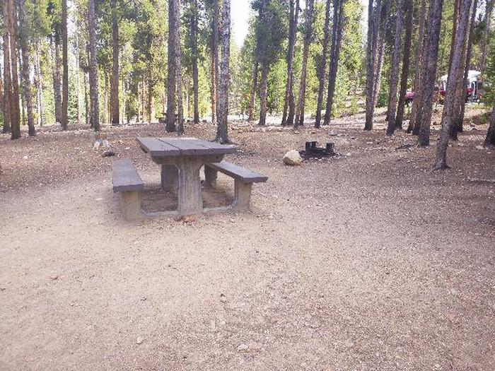 Baby Doe Campground, Site 38 table and fire ring