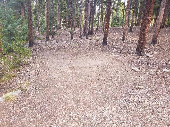 Baby Doe Campground, Site 38 clearing