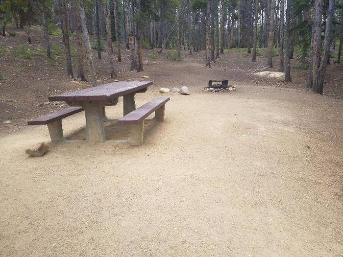 Baby Doe Campground, Site 40 table and fire ring