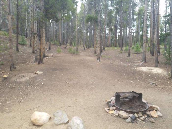 Baby Doe Campground, Site 40 fire ring