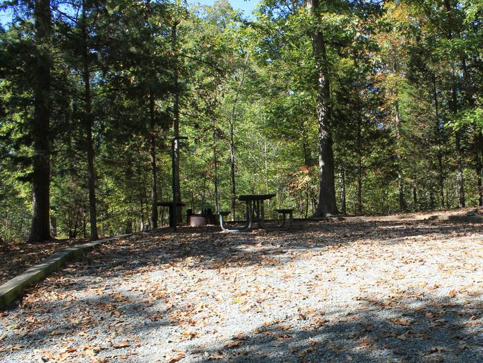 Longwood CampgroundCampsite #18