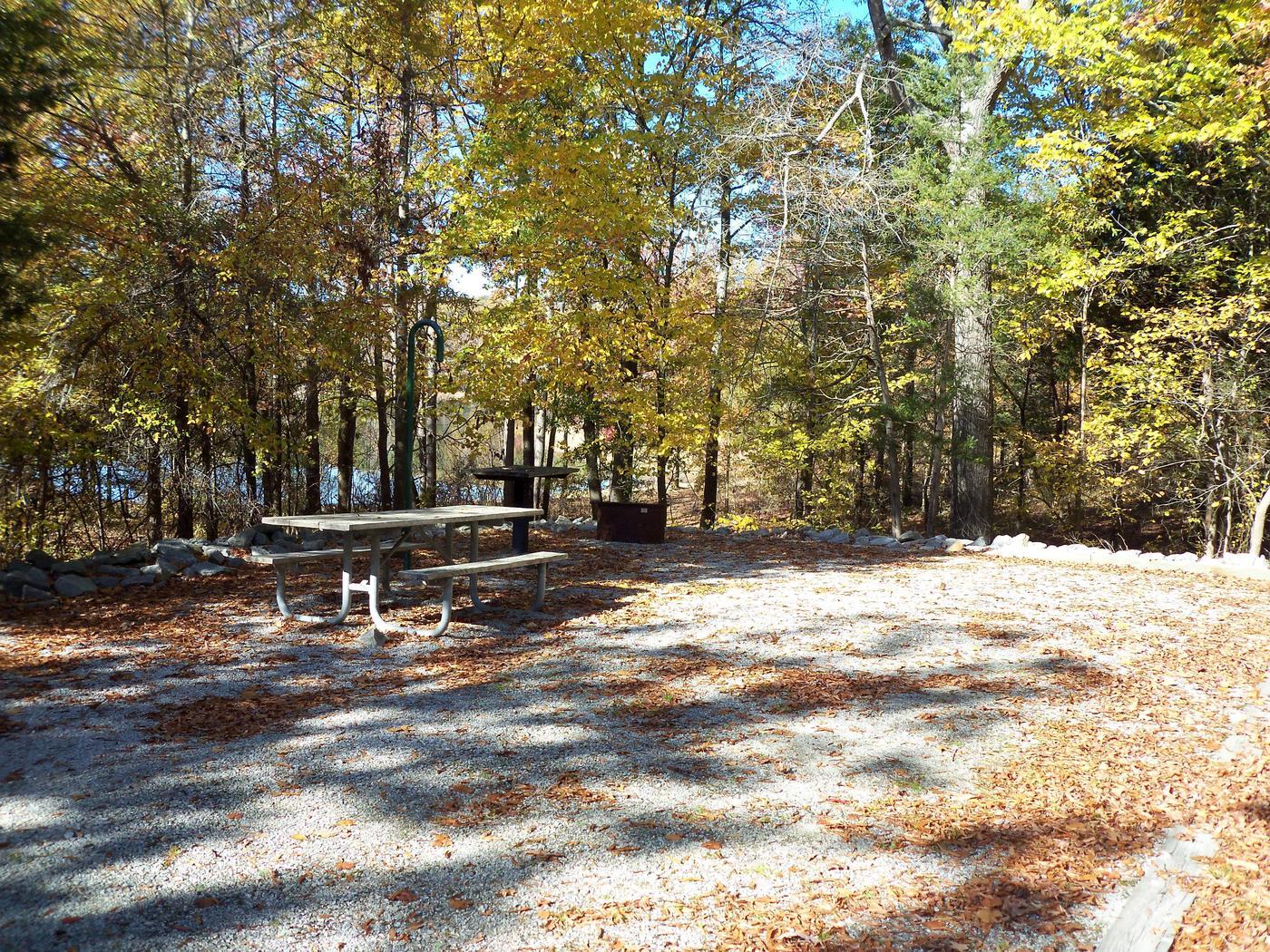 Longwood CampgroundCampsite #22