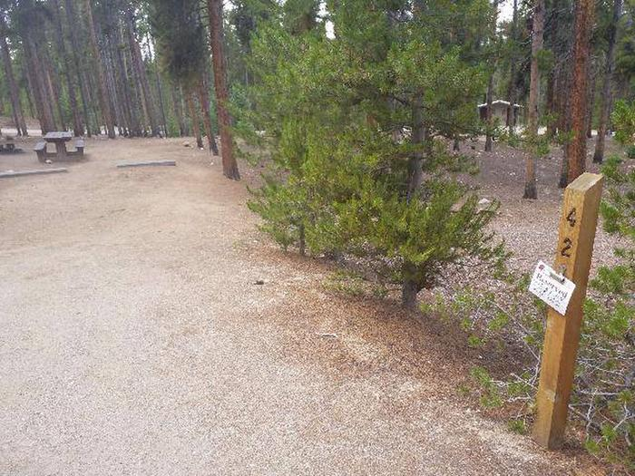 Baby Doe Campground, site 42 marker